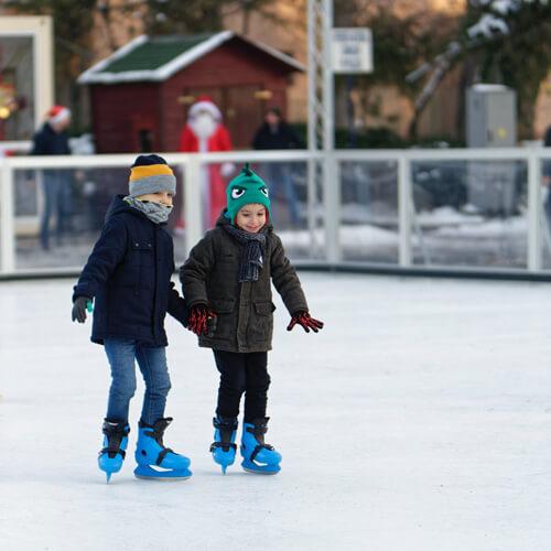snowflake skate img2